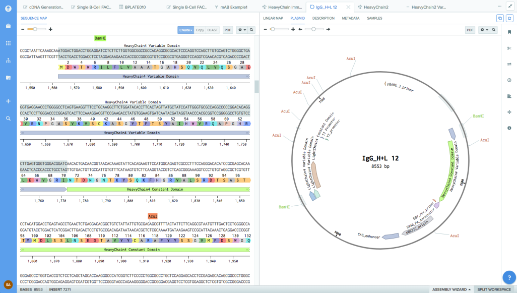 Benchling raises $14.5M to help streamline collaboration among scientists