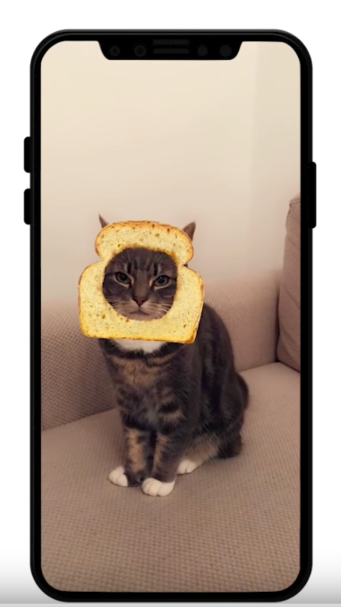Snapchat now has cat lenses. (Yes, for your cat.)