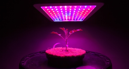 Weed in space is going to be a thing now | TechCrunch