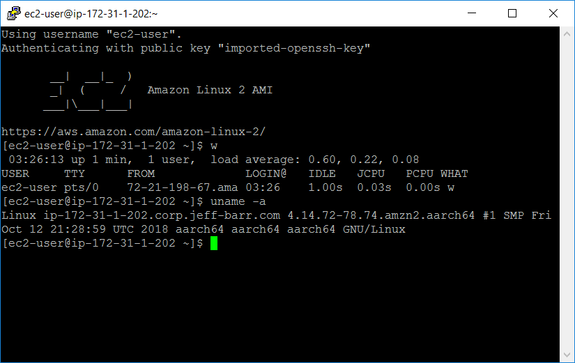 AWS launches Arm-based servers for EC2 arm running 11