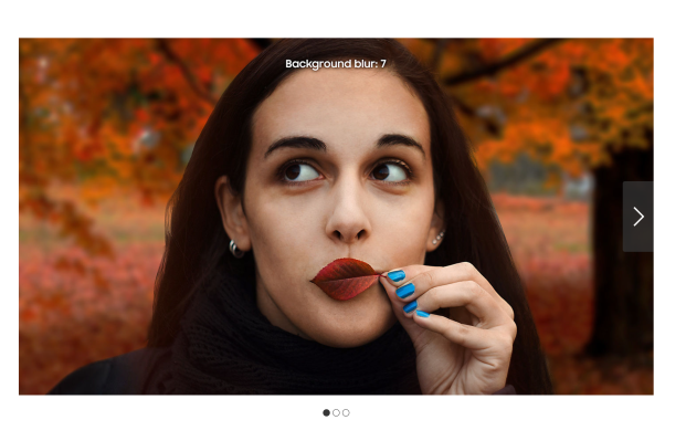 Samsung fakes test photo by using a stock DSLR image Screen Shot 2018 12 04 at 4