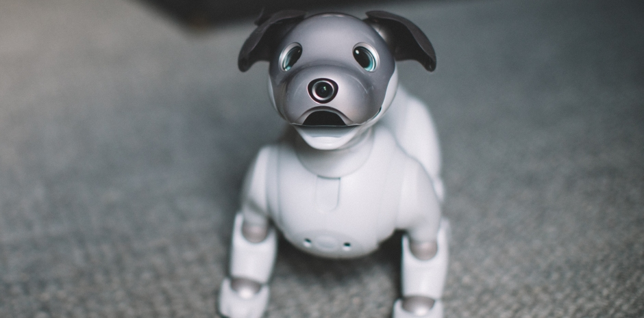 Up Close And Hands On With Sonys Aibo Techcrunch