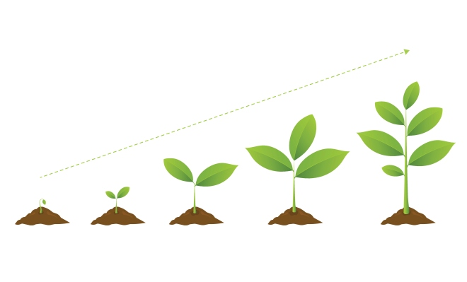 VCs have growing appetite for 'AgriFood'