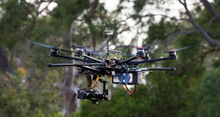 Koala-sensing drone helps keep tabs on drop bear numbers | TechCrunch