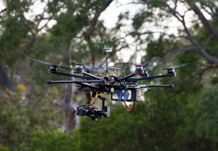 Koala-sensing drone