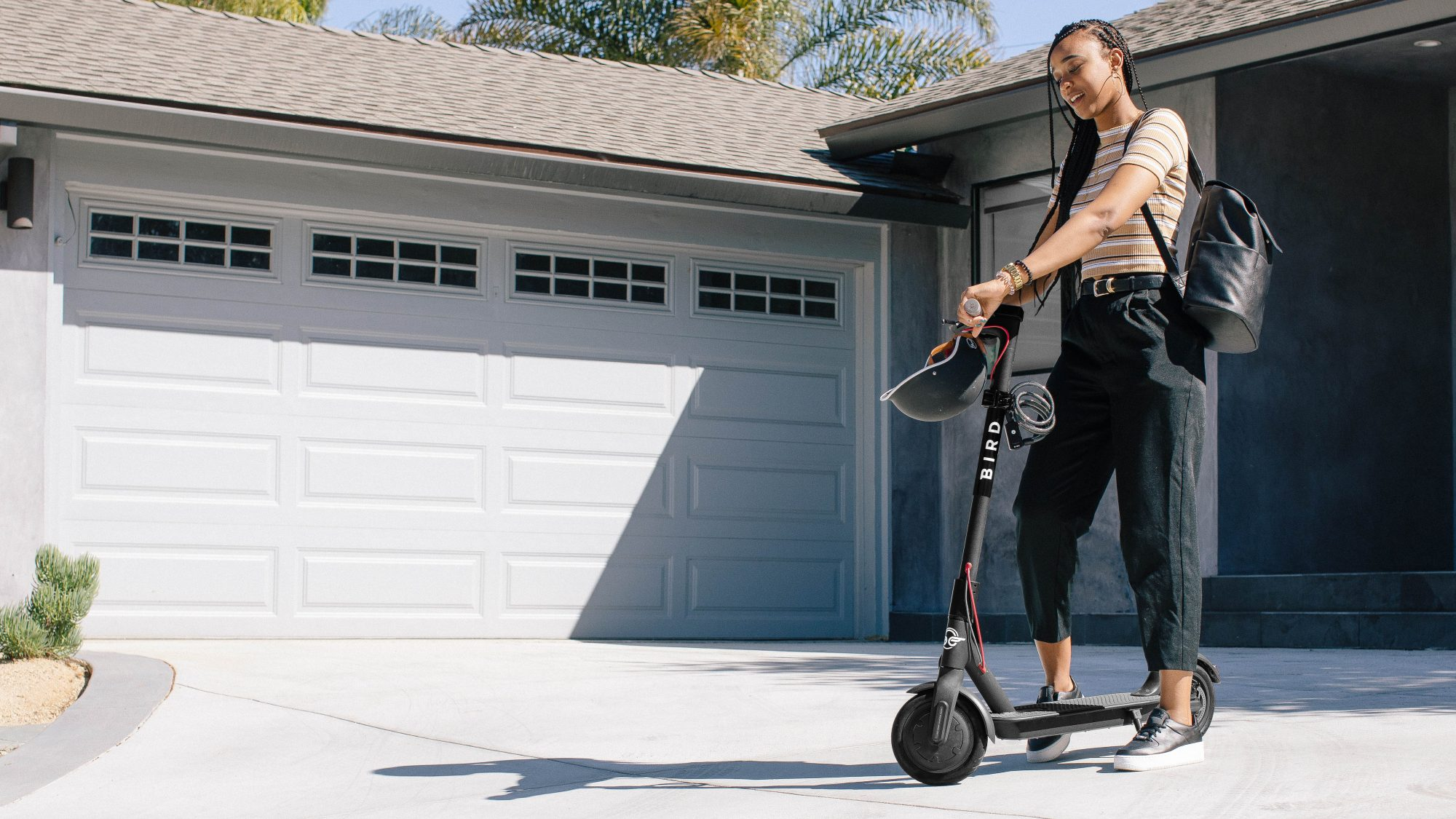 Scooter Rental San Francisco >> Bird Scooters Are Coming Back To San Francisco Techcrunch