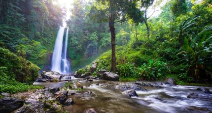Jungle Ventures hits $175M first close on its third fund for ...