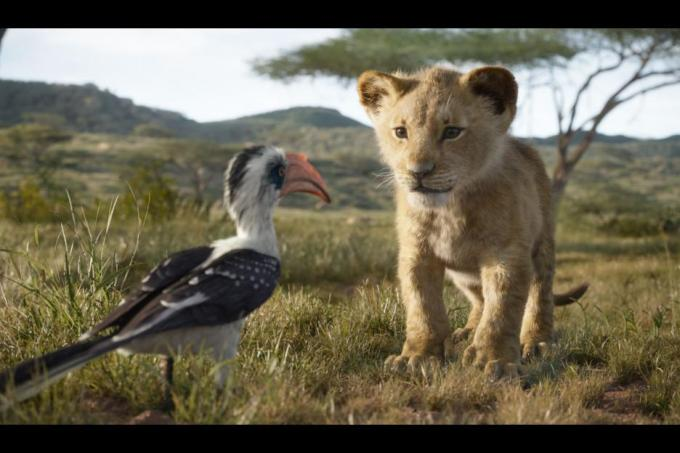 TheLionKing5cadf226d5164 - How the new 'Lion King' came to life