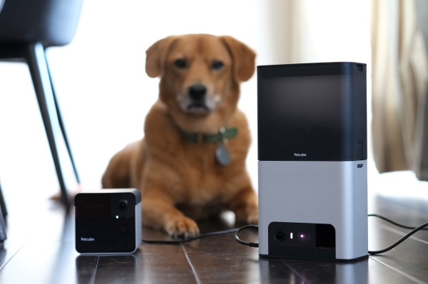 QnA VBage Petcube's Bites 2 and Play 2 amuse pets and humans alike with Alexa built-in