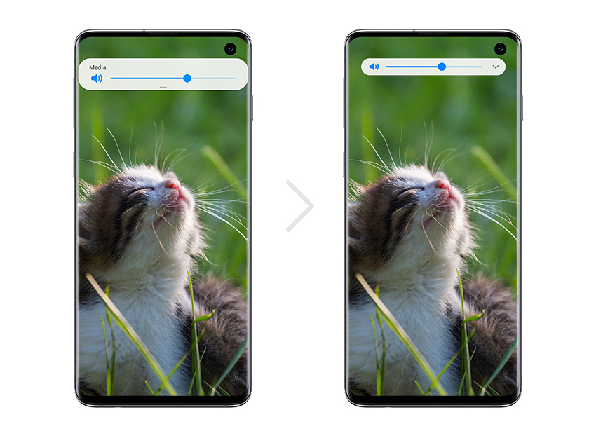 Samsung One UI Beta Program Cat S10 full screen