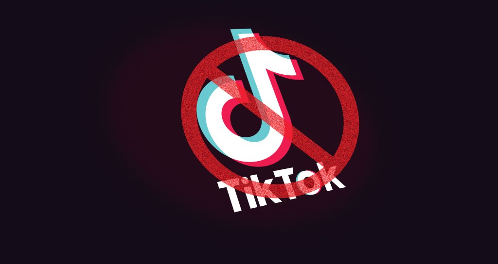 Senate bill seeks to ban Chinese app TikTok from government work ...