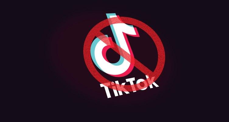 Proyecto de ley del Senado busca prohibir la aplicación china TikTok de los teléfonos de trabajo del gobierno 20