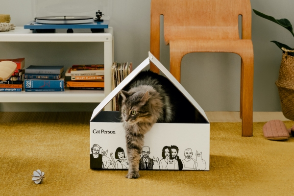 Backed by Harry's Labs, Cat Person launches its lineup of cat care products