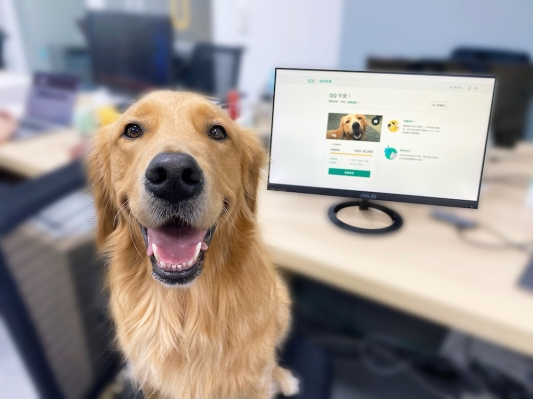 Hong Kong insurtech startup OneDegree launches its first product, medical coverage for pets – TechCrunch