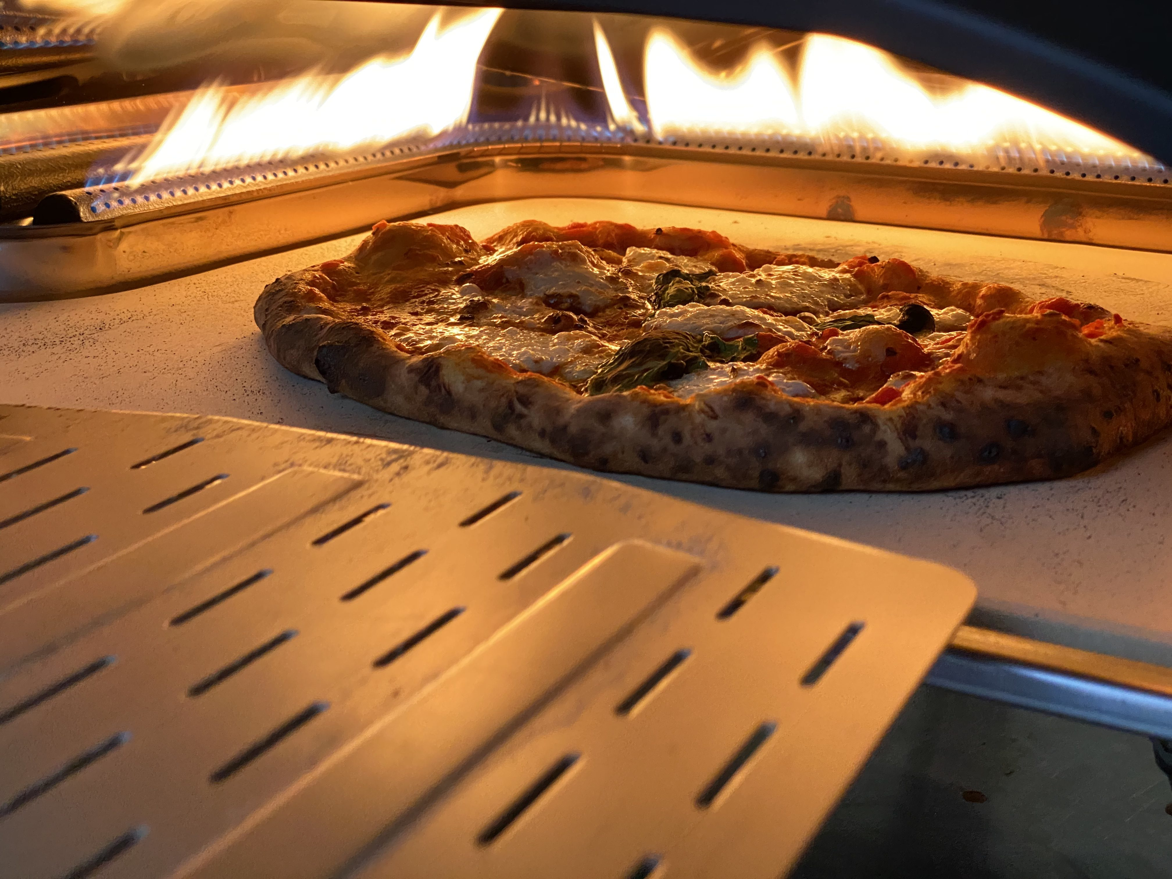 Ooni S Koda 16 Pizza Oven Is The Rare Kitchen Gadget That Delivers On Its Promise Techcrunch