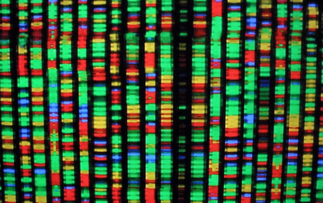 Federated Genomic data startup Lifebit raises $60M round led by Tiger Global - techcrunch