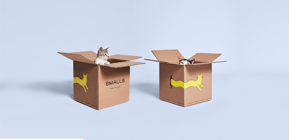 Direct-to-Consumer Cat Food Startup
