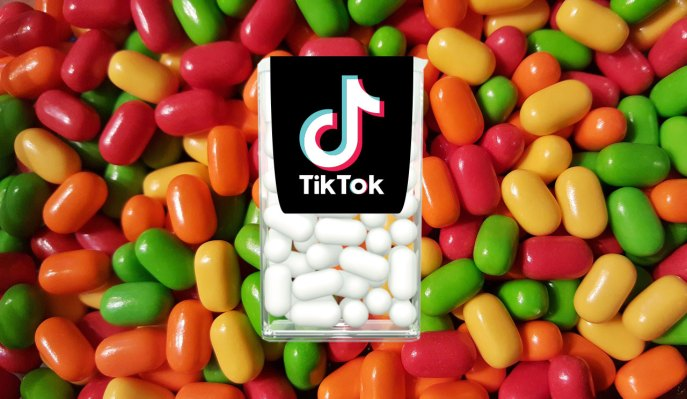TikTok is reportedly planning to challenge the Trump Administration ban
