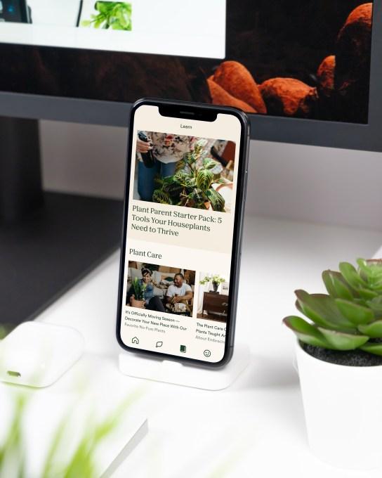 Online garden shop Bloomscape raises $15M Series B, acquires plant care app Vera 3