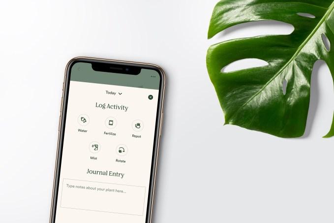 Online garden shop Bloomscape raises $15M Series B, acquires plant care app Vera 4
