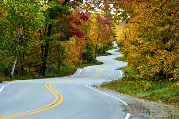 SaaS Ventures takes the investment road less traveled - techcrunch