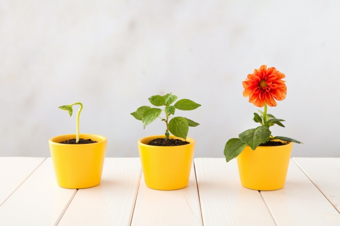 TechCrunch Experts: Growth Marketing image
