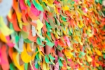 100s of colorful sticky notes on a wall.