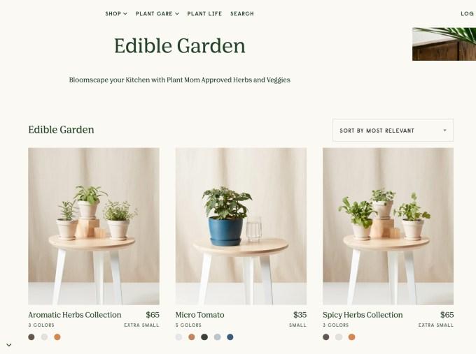 Online garden shop Bloomscape raises $15M Series B, acquires plant care app Vera 2