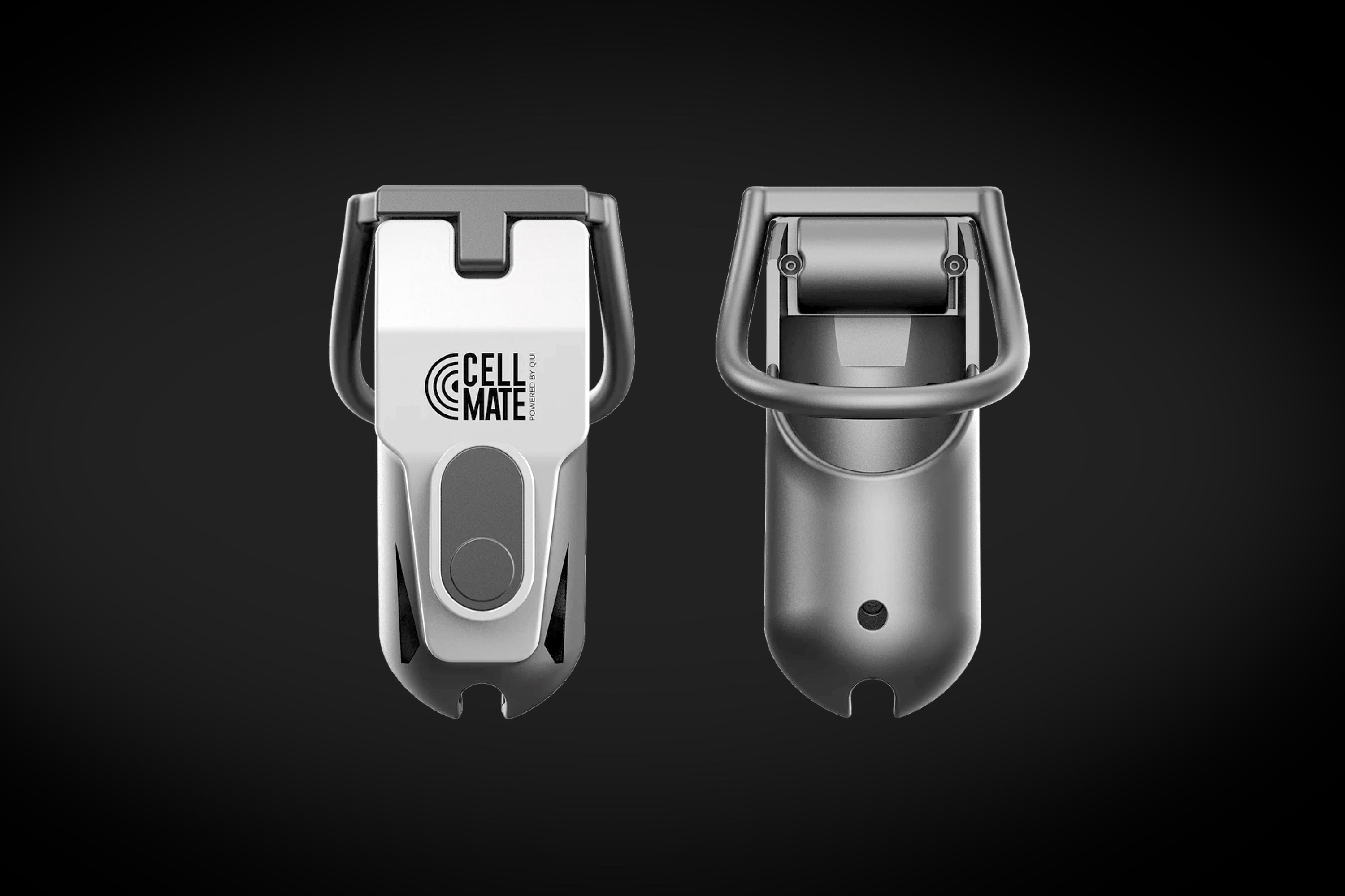 Male chastity gadget hack could lock users in — Cellmate
