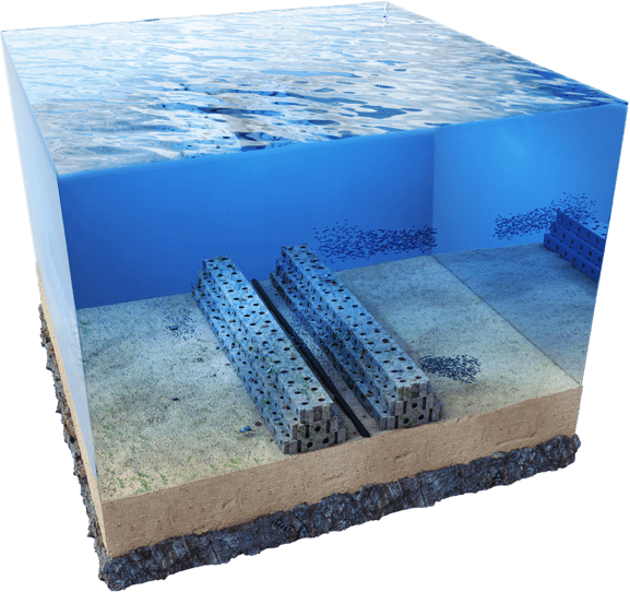 'Reefcubes' to help rebuild reefs.