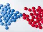 red and blue Chocolate sugar candy snack
