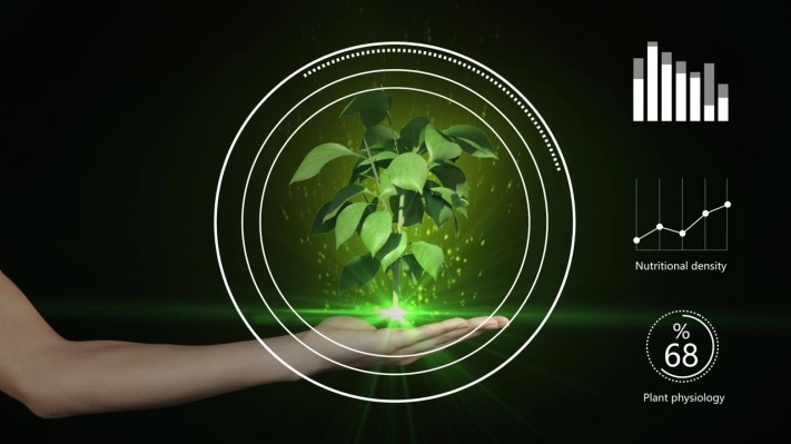 Gardin raises $1.2M pre-seed to use 'optical phenotyping' tech to improve food production