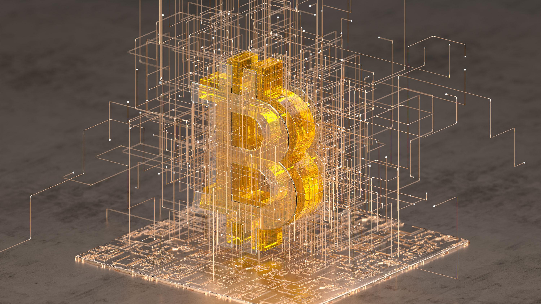Inside bitcoins new york 2021 ballot gaming international mobile betting