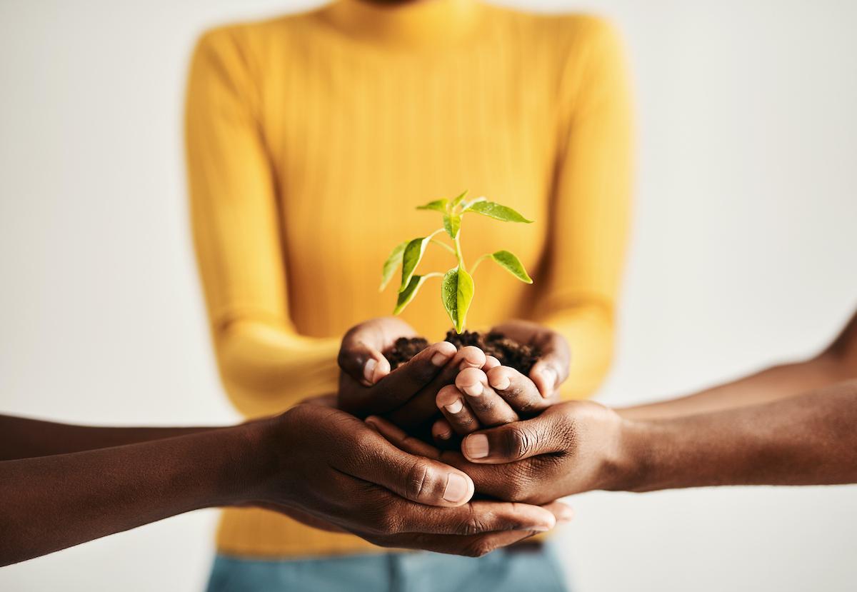 Группа людей держит в руках растения, растущие из почвы