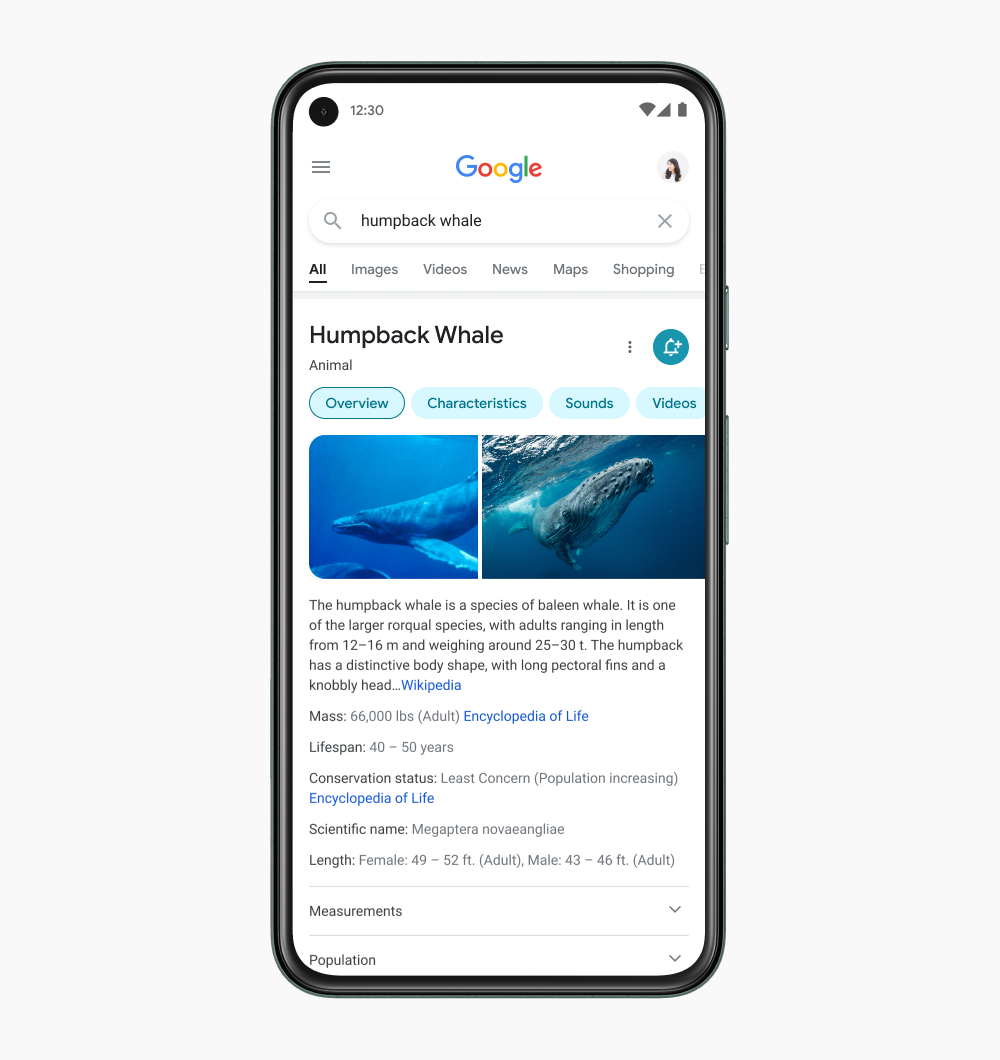 Google refreshes its mobile search experience – TechCrunch