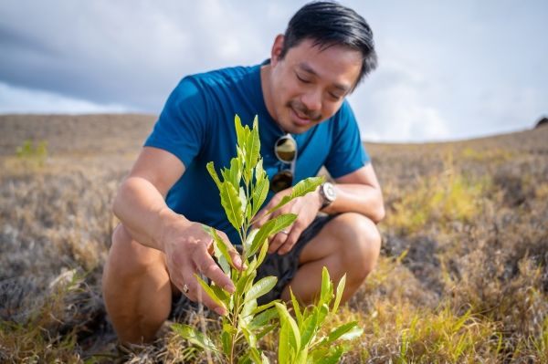 Terraformation gets M to fight climate change with rapid reforesting – TechCrunch
