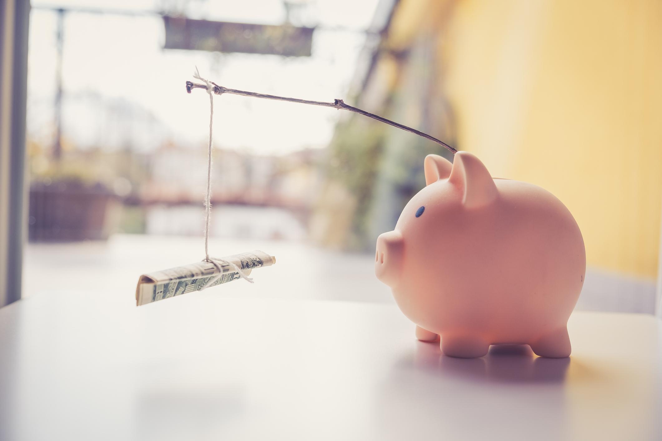 Piggy bank With a Money Carrot stick