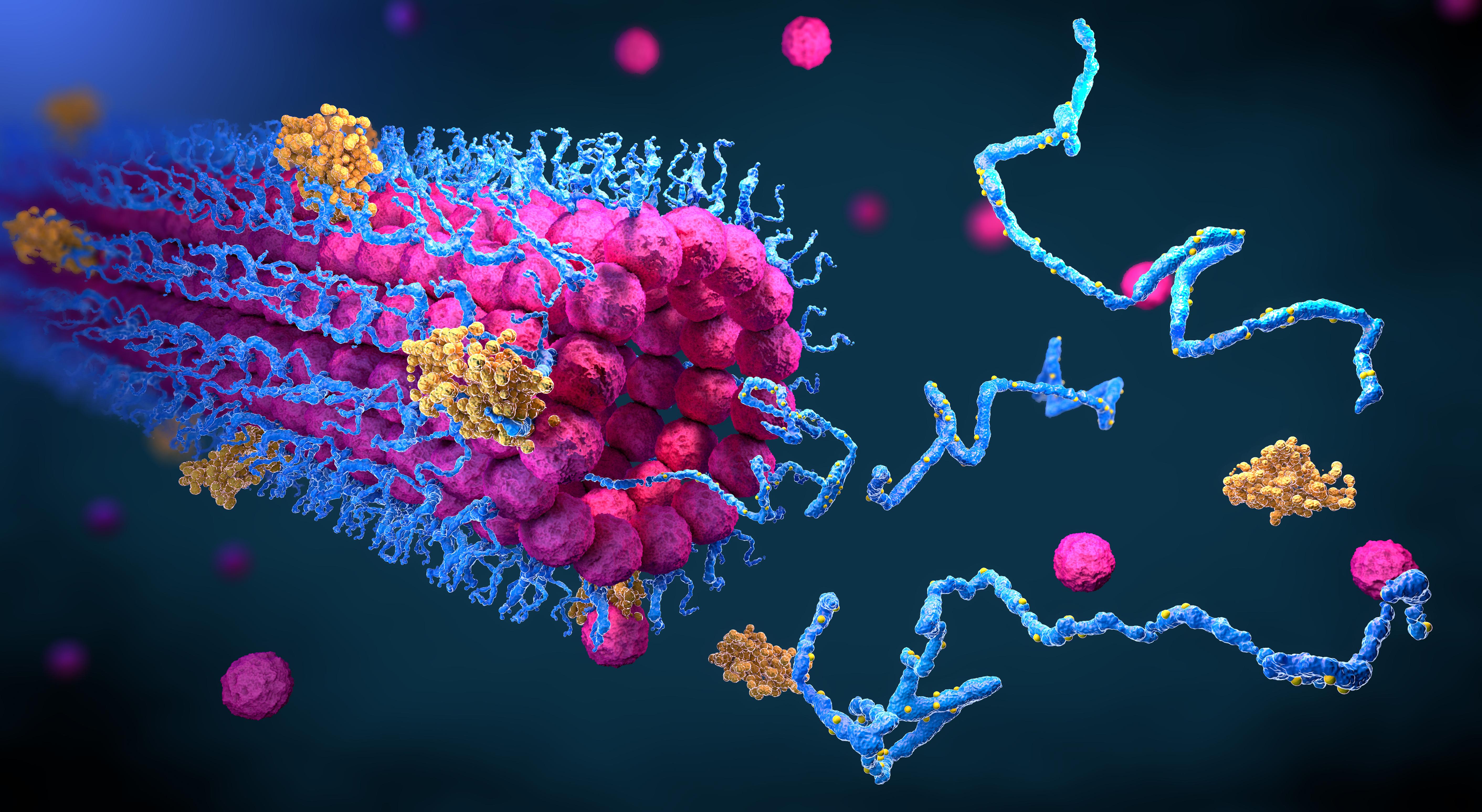 techcrunch.com - Emma Betuel - Shares of protein discovery platform Absci pop in market debut
