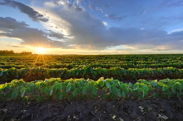 Fintech is transforming the world's oldest asset class: Farmland thumbnail