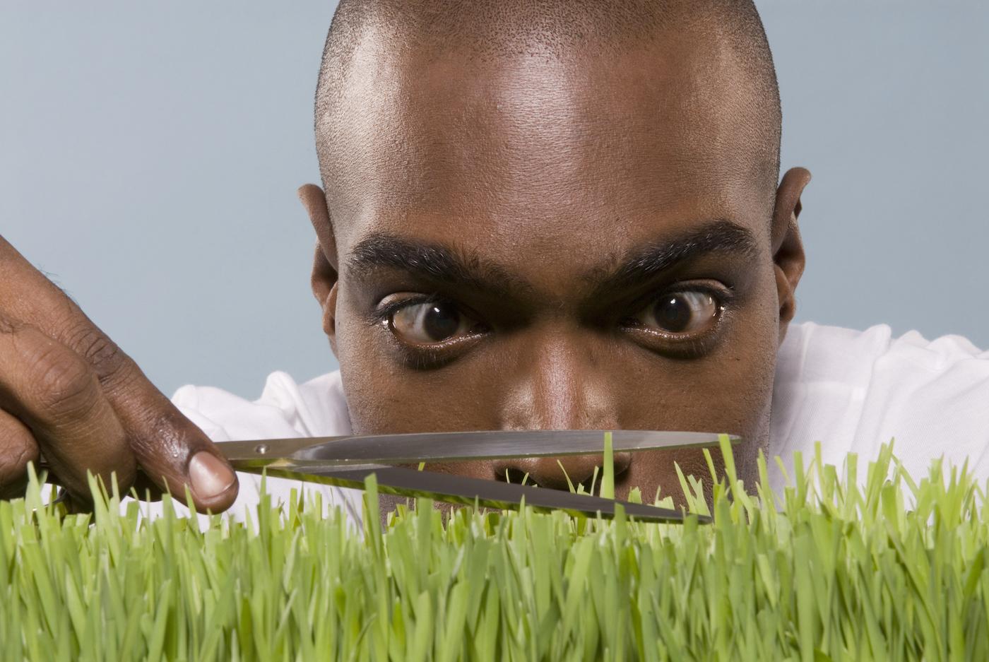 Man cutting wheatgrass with scissor, close-up